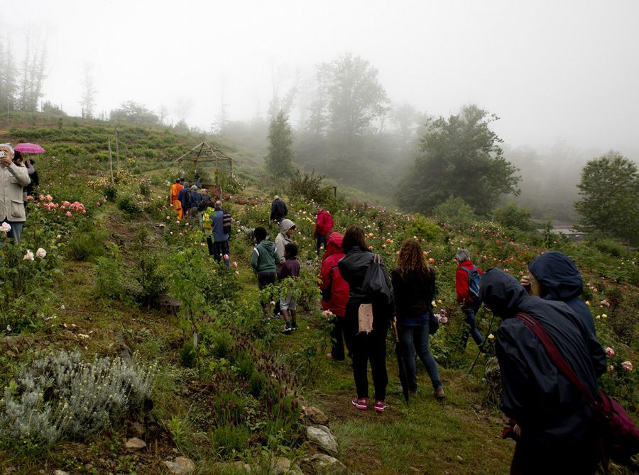convegno-ecologia-(5)